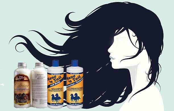 shampo kuda